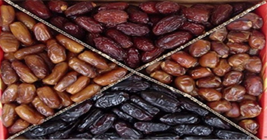 Variety of dates in Iran with their specifications