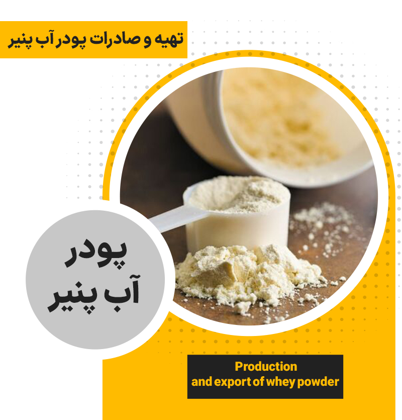 White and colored white cheese powder